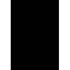 VENTILATOR VT12